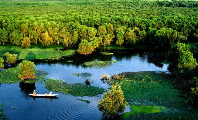 Vườn quốc gia U Minh Hạ Cà Mau