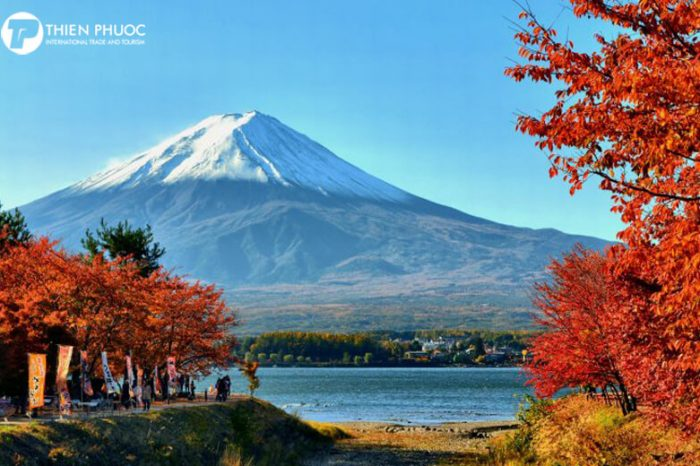 Du lịch Nhật Bản: MÙA LÁ ĐỎ TOKYO – NAGOYA – KYOTO – OSAKA (6 ngày)
