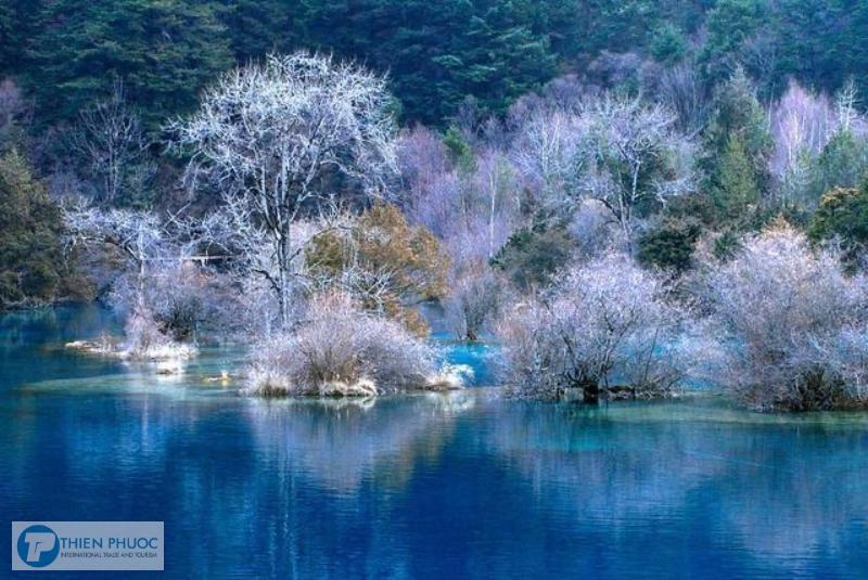 Tìm hiểu về Cửu Trại Câu ở Trung Quốc